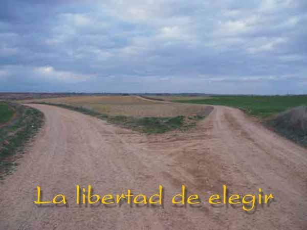LA LIBERTAD DE ELEGIR